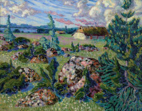 Saaremaa Landscape
